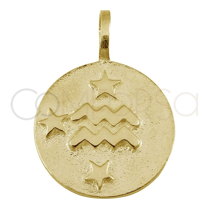 Colgante horóscopo Acuario alto relieve 20 mm plata 925 chapada en oro