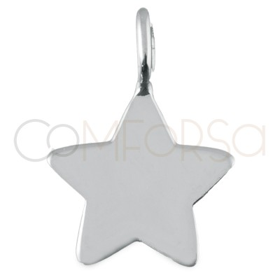 Star Pendant silver rose gold plated